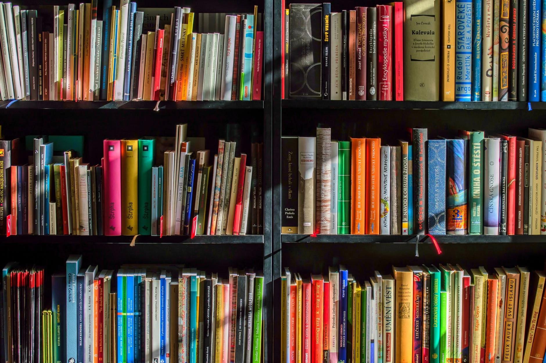 Dia Mundial do Livro Infantil: melhora os hábitos de leitura dos mais pequenos