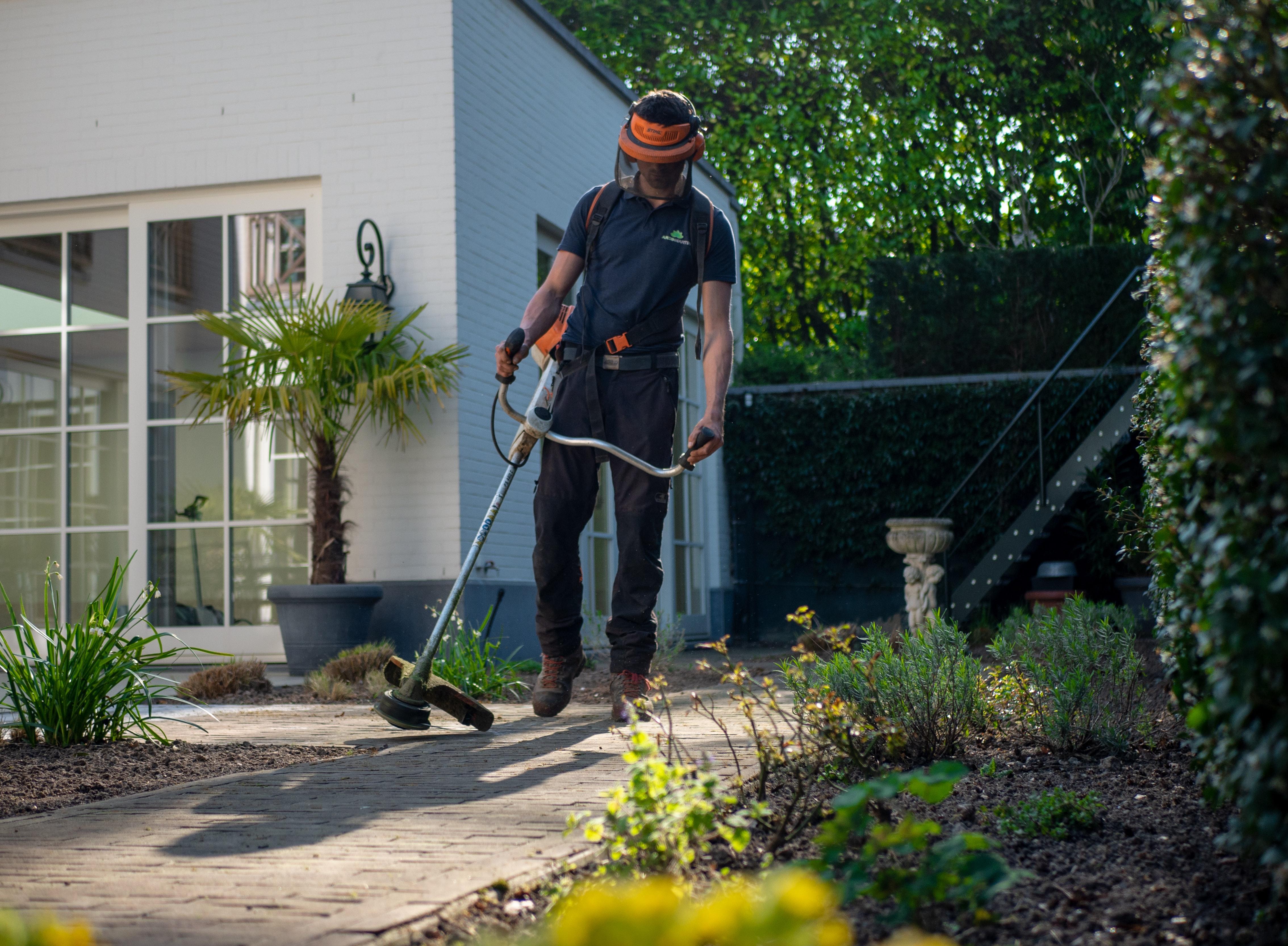 Limpeza de Terrenos: protege-te dos incêndios de Verão