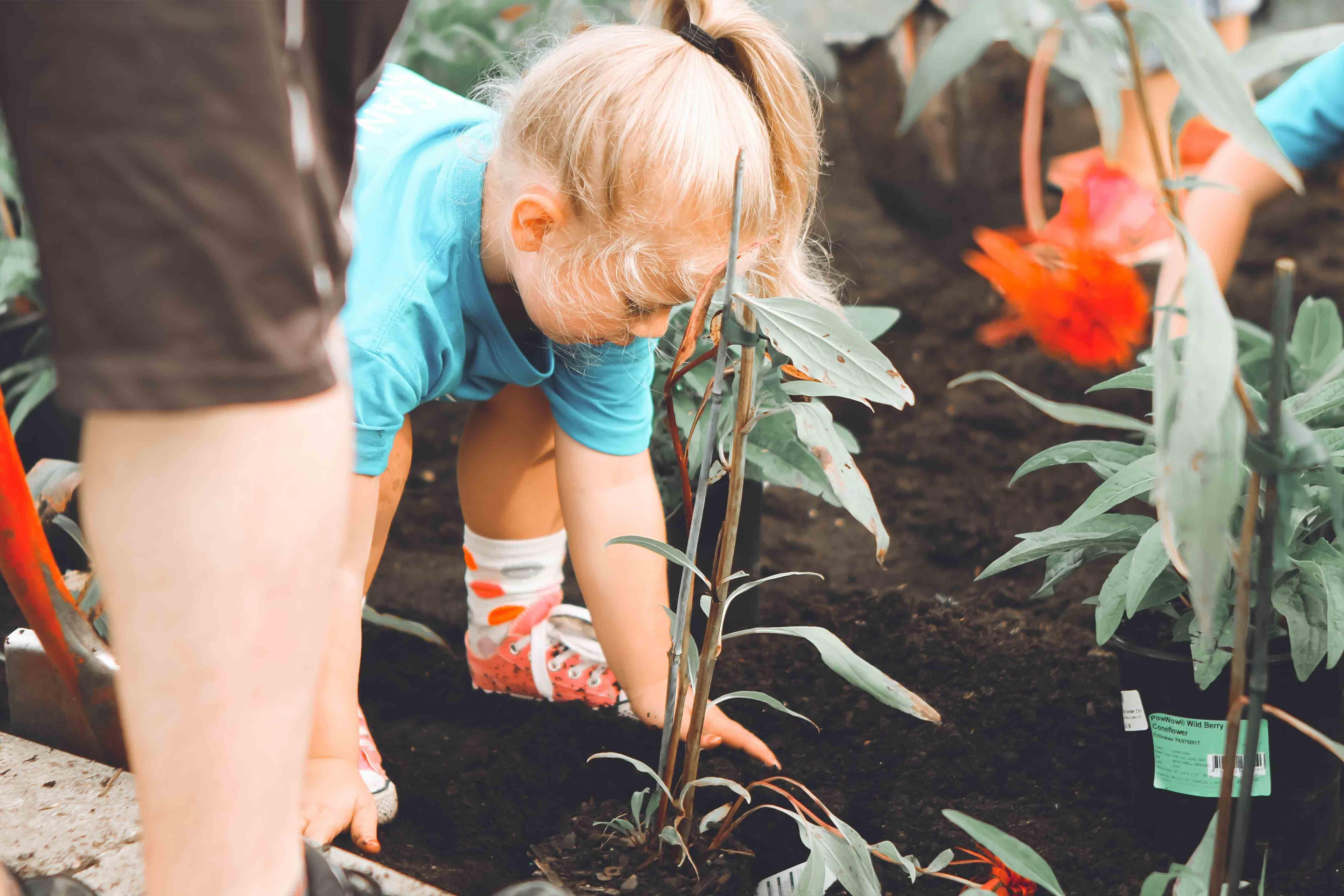Como explicar a sustentabilidade aos mais novos?