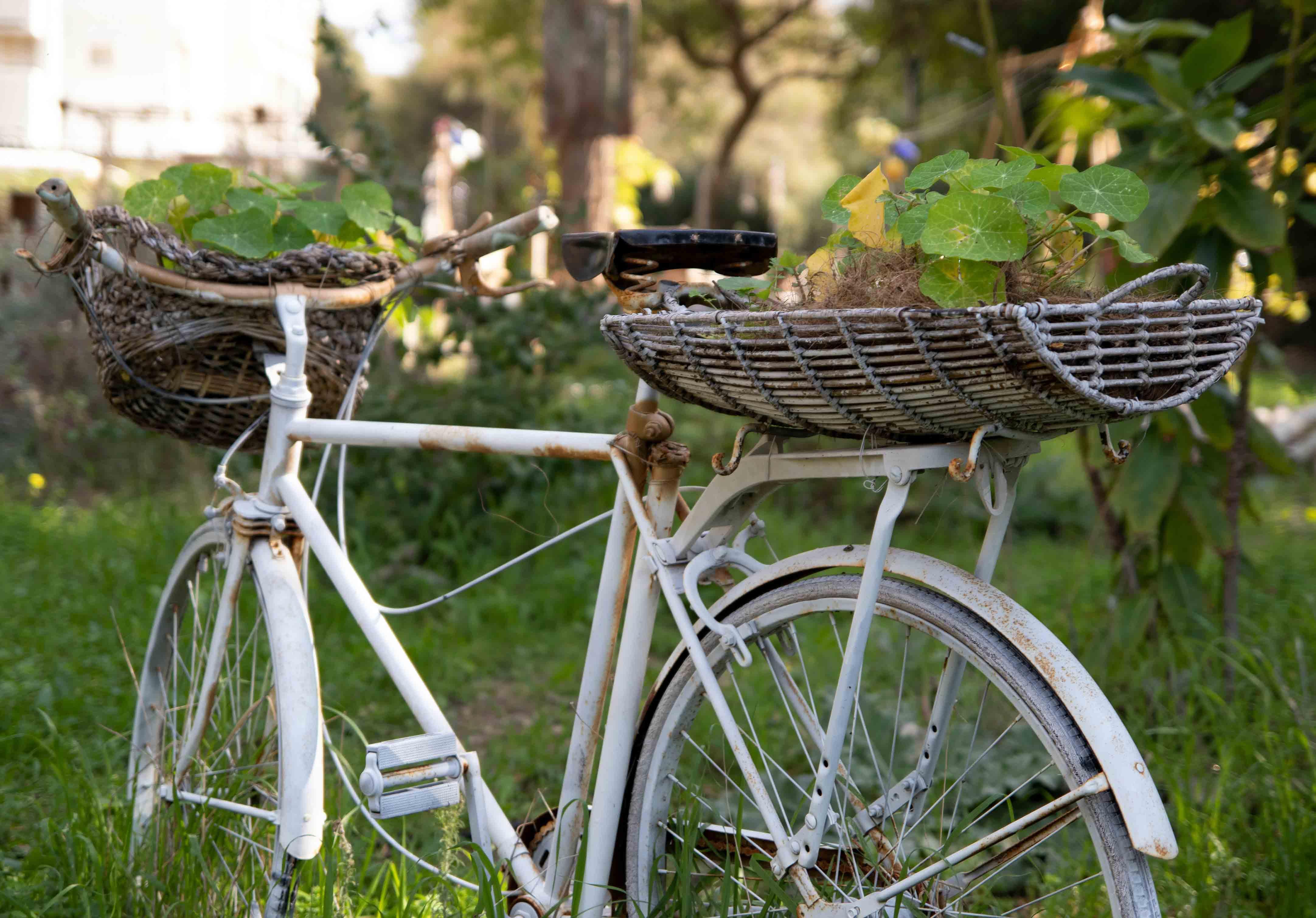 Da estrada para casa: reaproveita bicicletas antigas para decoração