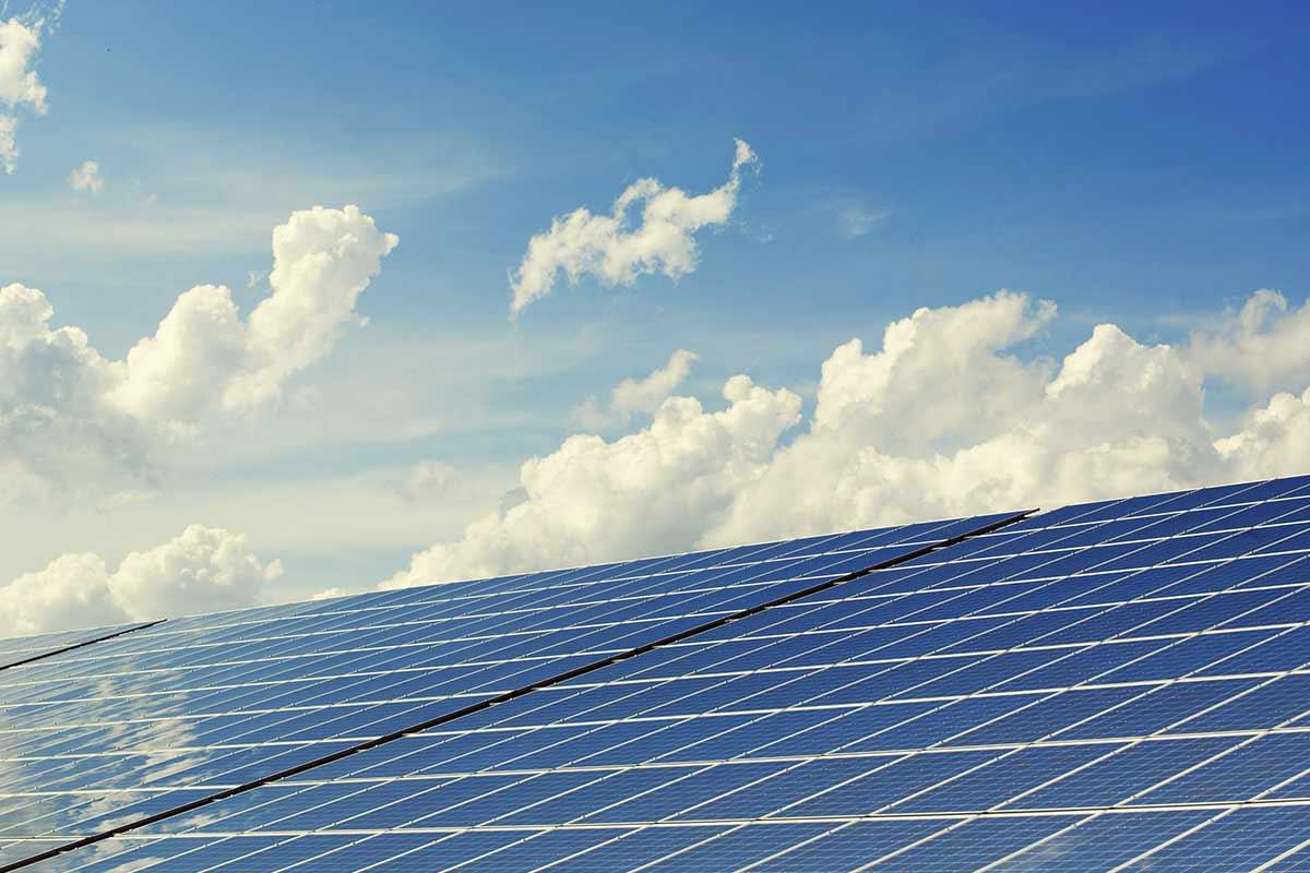 Painéis solares: ajuda o ambiente e a tua carteira