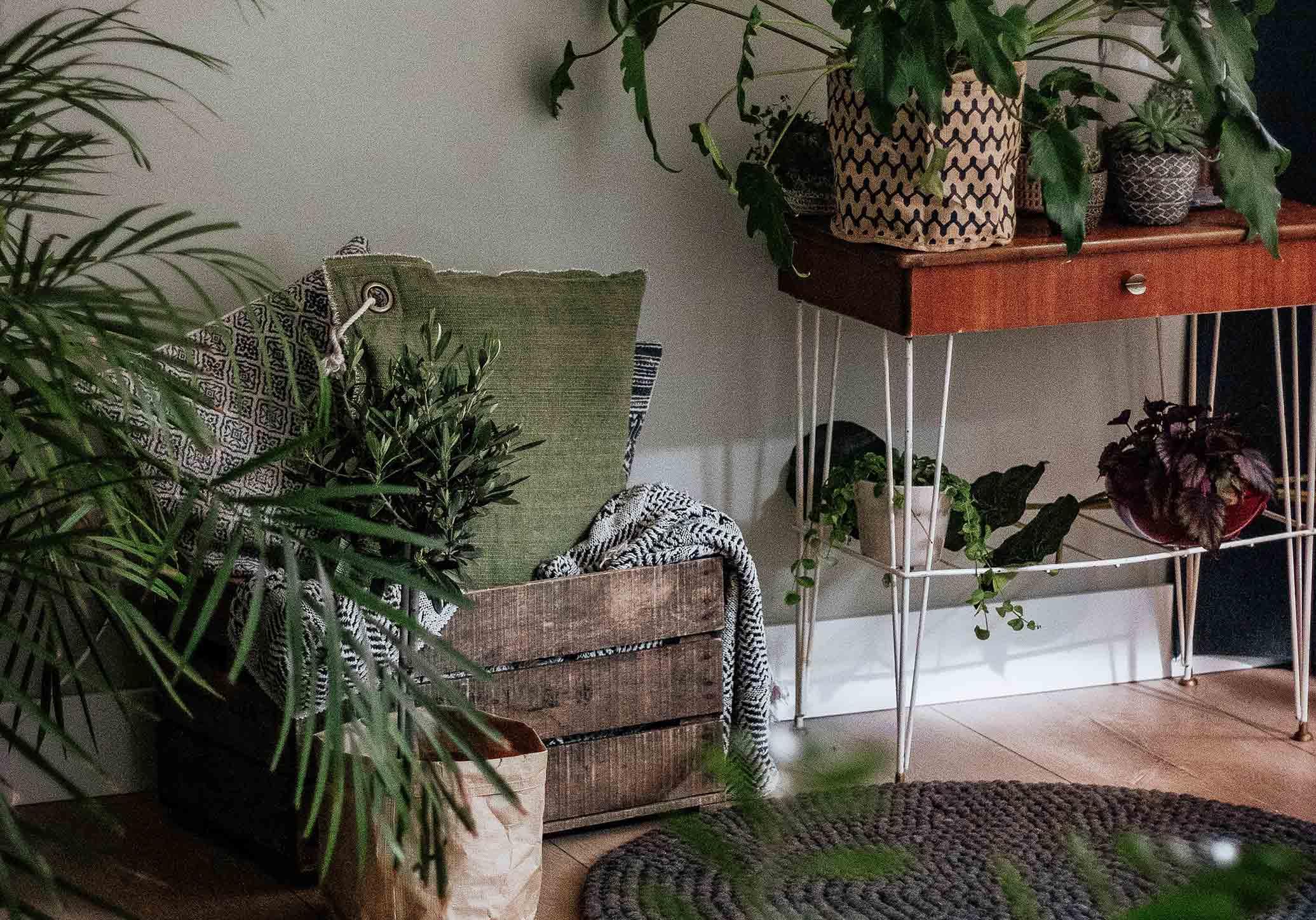 Decoração sustentável: 8 ideias que podes fazer em casa