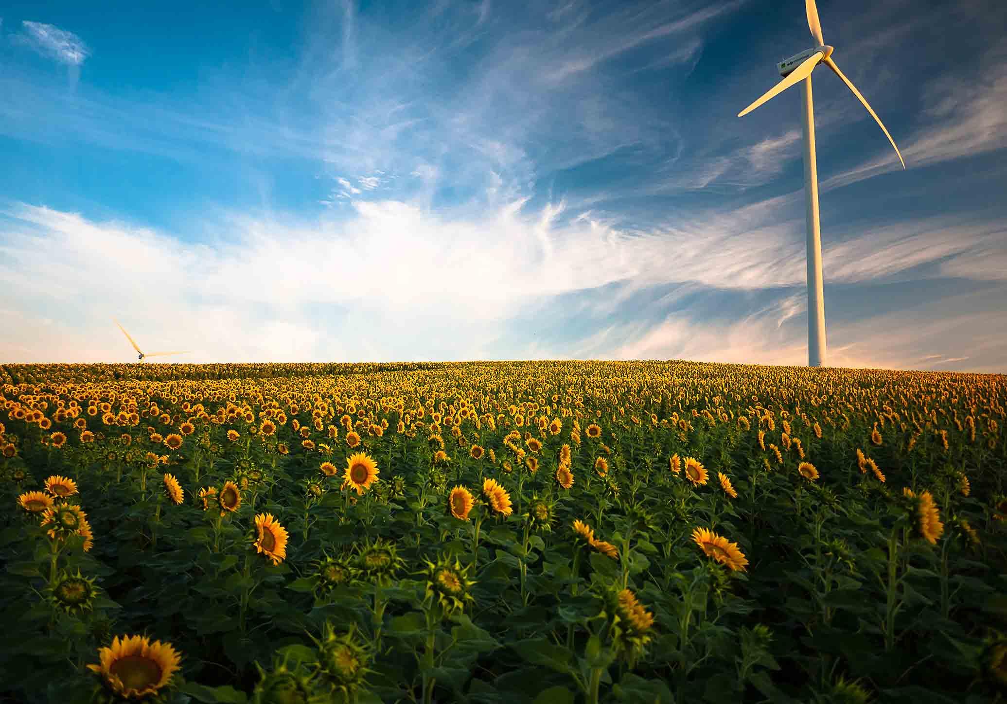 O que é a energia verde?