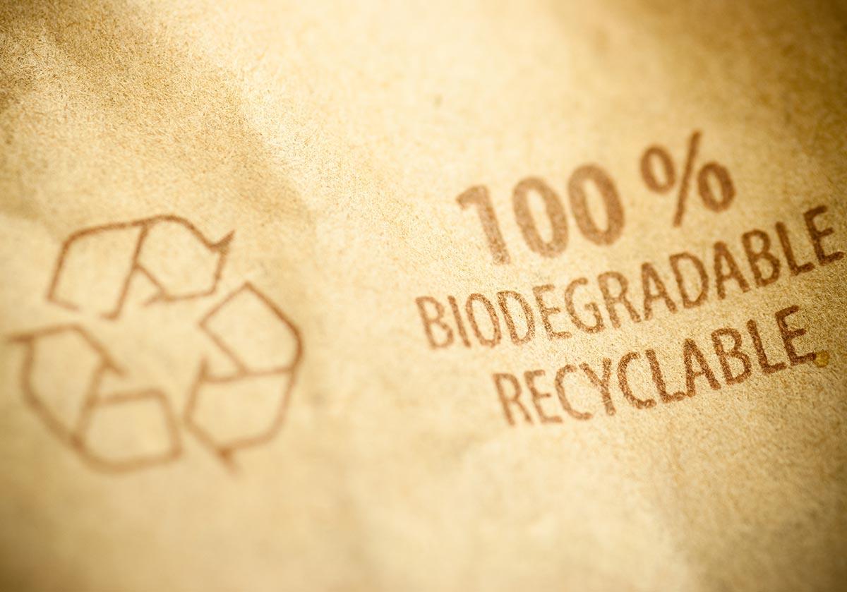 Biodegradável vs Compostável: quais são as diferenças?
