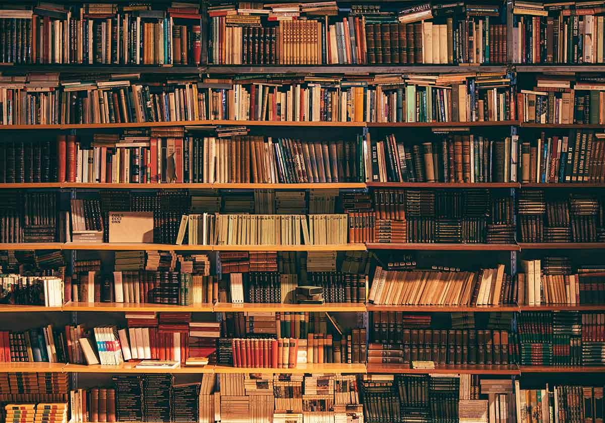Dia Mundial do Livro: 5 sugestões de leitura para celebrar esta data