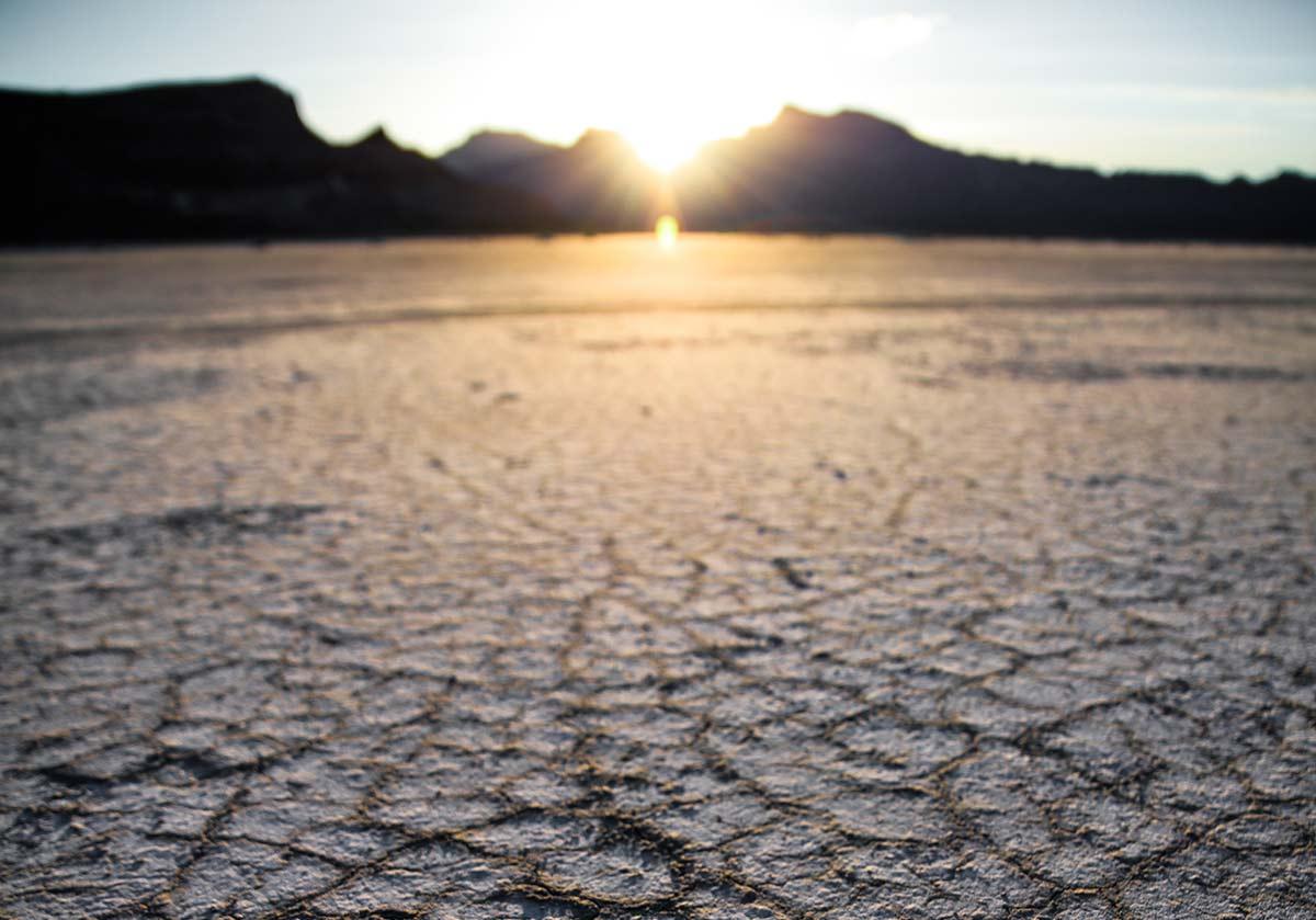 10 iniciativas simples para combater as alterações climáticas